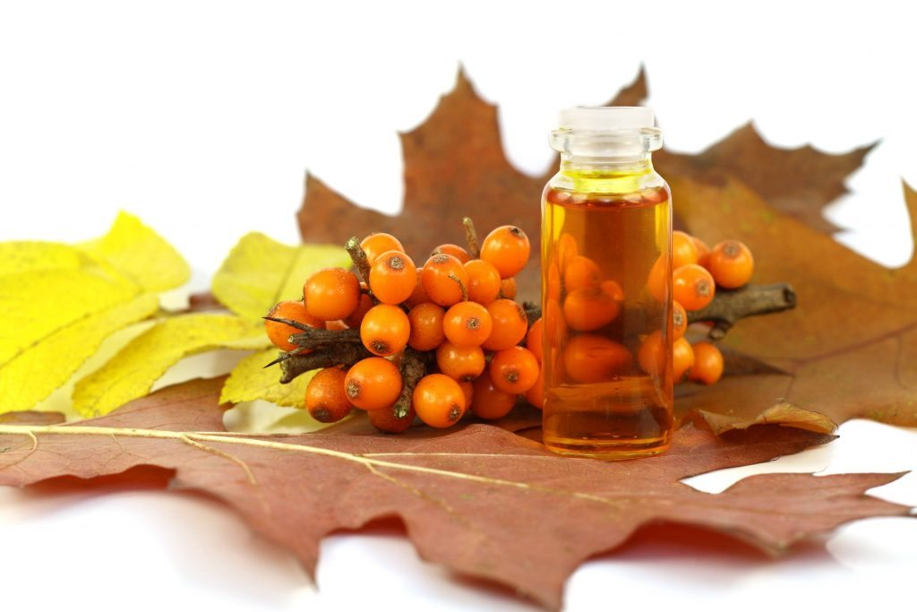 Sea buckthorn essential oil for psoriasis