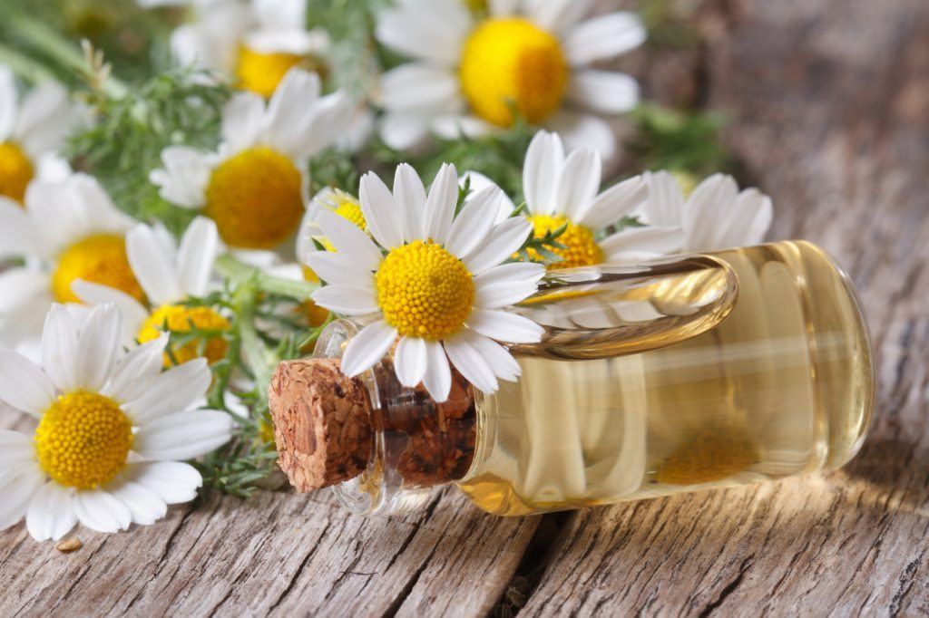 Chamomile essential oil for seborrheic dermatitis on face