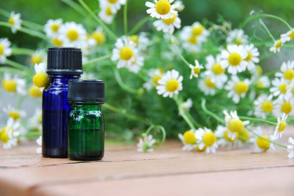 German chamomile essential oil for rosacea